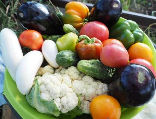 Wege mood – czyli kilka praktycznych wskazówek jak zbilanować dietę roślinną